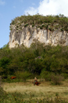 Cuba - Holguín province - cowboy and table mountain - photo by G.Friedman