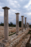 Kourion - Limassol district, Cyprus: in the sanctuary of Apollo Hylates - photo by A.Ferrari