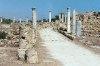 North Cyprus - Salamis - Famagusta district: Roman ruins (photo by Galen Frysinger)