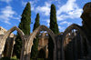 Bellapais, Kyrenia district, North Cyprus: Bellapais abbey - arcade and Mediterranean Cypress trees in the courtyard - photo by A.Ferrari