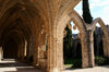 Bellapais, Kyrenia district, North Cyprus: Bellapais abbey - along the arcade - photo by A.Ferrari