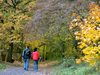 Czech Republic - Ceske stredohori mountains: hikers - Autumn foliage - Usti nad Labem Region - photo by J.Kaman