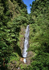 Dominica - Inland water falls - Morne Trois Pitons National Park - Unesco world heritage site - photo by G.Frysinger