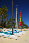 Punta Cana, Dominican Republic: catamarans on the sand - Arena Gorda Beach - photo by M.Torres