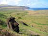 Tonguiki - Ahu Akivi (Ilha da Pascoa, Isla de Pascua) : statue head and the Pacific Ocean - photo by Rod Eime