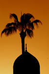 Egypt - Alexandria:  Abu Abbas al Mursi mosque - dome at sunset (photo by John Wreford)