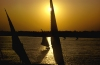 Egypt - Luxor: the Nile - sails at sunset - feluccas (photo by J.Wreford)
