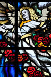 San Salvador, El Salvador, Central America: Metropolitan Cathedral - angel - stained glass window of one of the side chapels - photo by M.Torres