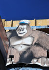 San Salvador, El Salvador, Central America: gorilla sign on 6a calle poniente - photo by M.Torres