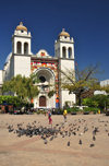 San Salvador, El Salvador, Central America: Metropolitan Cathedral and pigeons on Plaza Barrios - centro histórico - photo by M.Torres