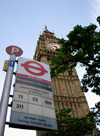 London: Big Ben and bus stop - photo by K.White