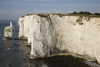 Old Harry Rocks, Jurassic Coast, Dorset, England: white cliffs and the Pinnacles - UNESCO World Heritage Site - photo by I.Middleton