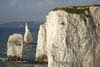 Old Harry Rocks, Jurassic Coast, Dorset, England: the Pinnacles - Handfast Point - UNESCO World Heritage Site - photo by I.Middleton
