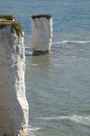 Old Harry Rocks, Jurassic Coast, Dorset, England: sea stack of chalk and the foreland - UNESCO World Heritage Site - photo by I.Middleton