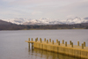 Lake District, North West England, UK: view across Lake Windermere - pier and snow covered mountains - photo by I.Middleton