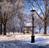 London, England: snow covers Hyde Park - City of Westminster - photo by A.Bartel