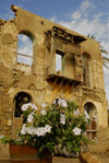 Eritrea - Massawa, Northern Red Sea region: flowers and ruins in the old area of the city - photo by E.Petitalot