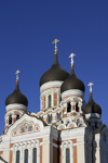 Estonia, Tallinn: Alexander Nevsky Cathedral - Russian Revival style - photo by J.Pemberton