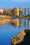 Valga, Estonia: reeds on the banks of the Pedeli river, with Soviet period apartment blocks in the background - river reflection - photo by M.Torres