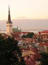 Estonia - Tallinn: Old Town and St. Olav's church / St. Olaf / Tallinna vanalinn ja Oleviste kirik  (photo by J.Kaman)
