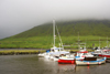Nor�rag�ta village, Eysturoy island, Faroes: fishing boats in the harbour - fog on the hills - photo by A.Ferrari