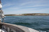 Falkland islands - East Falkland - Salvador - the coast - sailing - photo by Christophe Breschi