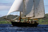 Yasawa Islands, Fiji: the 106 ft Dutch built double masted schooner La Violante at sail near the coast - sailing ship - photo by C.Lovell