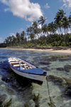 Coral Coast, Viti Levu, Fiji: fishing boat, clear waters, white sand beach, palm trees, and tropical blue sky of the Coral Coast - photo by C.Lovell