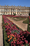 Versailles, Yvelines département, France: Palace of Versailles / Château de Versailles - flower beds and the palace - parterre - UNESCO world heritage - photo by Y.Baby