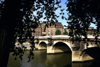 Paris: Pont Neuf and trees - photo by Y.Baby