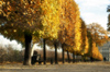 Paris: Tuileries Garden and the Louvre - Autumn - photo by Y.Baby