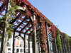 Le Havre, Seine-Maritime, Haute-Normandie, France: ivy on a pergola - Normandy - photo by A.Bartel