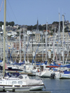 Le Havre, Seine-Maritime, Haute-Normandie, France: Yacht Harbour - masts in the marina - photo by A.Bartel