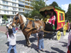 Le Havre, Seine-Maritime, Haute-Normandie, France: Circus Clown, Children's Carnival - Zampano Circus horse cart - photo by A.Bartel