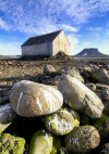 Russia, Northwestern Federal District, Arkhangelsk Oblast - Franz Josef Land - Bell Island: bird stained rocks with hut (photo by Bill Cain)