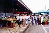 Cayenne: Market on avenue Monerville (photo by Bernard Cloutier)