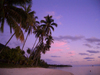 French Polynesia - Moorea / MOZ (Society islands, iles du vent): palms and lagoon at dusk - photo by R.Ziff