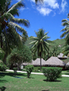 French Polynesia - Moorea / MOZ (Society islands, iles du vent): bungalow over the beach - photo by R.Ziff
