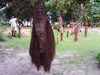 Cap Estérias, Estuaire province, Gabon: Gabonese art - sculpture - African mask - photo by B.Cloutier