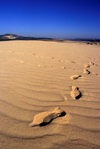 Galicia / Galiza - Corrubedo National Park - A Coru�a province: footprints on the sand dune - Barbanza Peninsula - Parque Natural Dunas de Corrubedo - Rias Baixas - photo by S.Dona'
