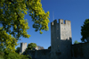 Gotland - Visby: northern wall - ringwall - photo by A.Ferrari