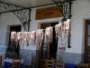 Greece - Githio (Peloponnese): octopus drying at a taverna - Kozia psarotaverna - photo by R.Wallace