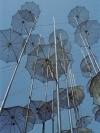 Greece - Thessaloniki  (Makedonia / Macedonia) : umbrella art - photo by M.Bergsma