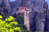 Greece - Meteora: Holy Monastery of Rousanou - UNESCO World Heritage Site - leaves - photo by A.Dnieprowsky