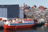 Greenland - Ilulissat / Jakobshavn - harbour - transport and supply ship Saqqit Ittuk in the port of Ilulissat / Jakobshavn - shrimp building in the background - photo by W.Allgower