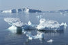 Greenland - Ilulissat / Jakobshavn - ice blocks melting - Jakobshavn Glacier, the Ilulissat Icefjord - photo by W.Allgower