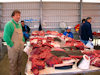 Greenland - Nuuk / Godthab: Braedet Market -  whale and dolphin meat - photo by B.Cloutier
