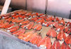 Greenland - Nuuk / Godthab: Braedet Market - home-made smoked salmon - photo by B.Cloutier