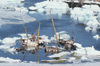 43 Disko bay (West Greenland / Kitaa / Vestgr?land) - shipcemetery near Ilulissat / Jakobshavn - retired fishing - photo by W.Allgower