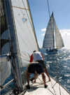 Grenada - regatta - crew on the foredeck - photo by P.Baldwin
